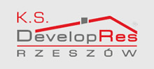 developres logo
